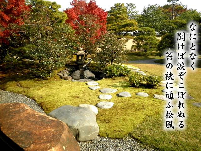 スナゴケ庭園緑化